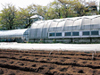 Horticulture Field