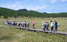 Camp at Oiwake Mountain Cottage(Ikenotaira Hiking)