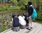 湿生花園-4