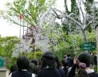 箱根ガラスの森美術館-1