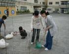 動物たちのフンの掃除までが仕事です