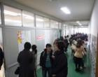 廊下には英語と国語の展示物
