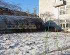 園芸実習園の雪